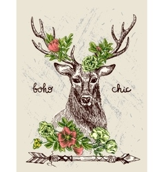 hand drawn deer vector image