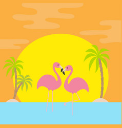 Two pink flamingo standing on one leg palms tree vector