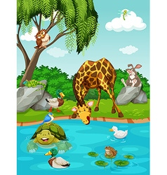 Wild animals by the river vector