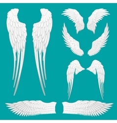 Heraldic Wings Set for Tattoo or Mascot Design vector image vector image
