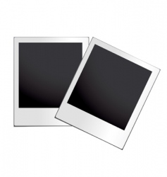 instant photograph vector image