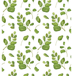Seamless greenery patten background floral vector