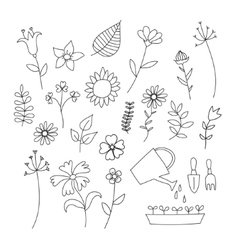 Set of doodle flowers and plants vector image vector image