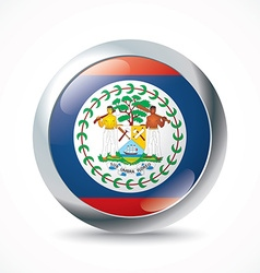 Belize flag button vector