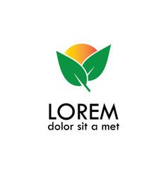 leaf sun logo vector image