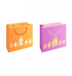 bag with presents vector image