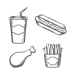 French fries hot dog chicken leg ans soda vector