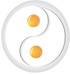 Yin-yang symbol made from fried eggs on plate vector image