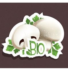 Bio mushroom tag vector image vector image