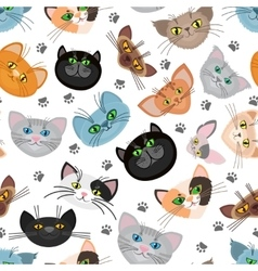 Cat face background with paws vector