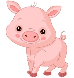 Fun zoo pig vector