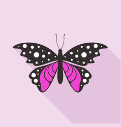 flat butterfly6 vector image vector image