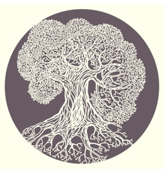 Oak tree  stylized isolated vector