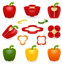 Icon set pepper vector