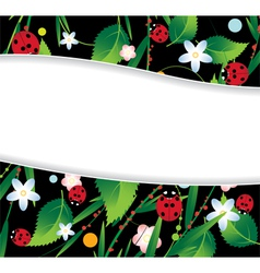 Ladybugs and flowers vector image