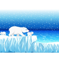 funny polar bear family with snow mountain vector image