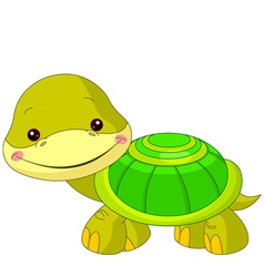 Fun zoo turtle vector