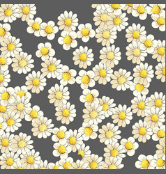 Blooming daisies on a dark background vector