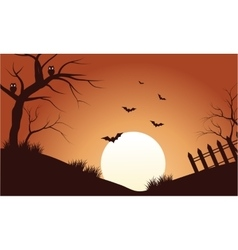 Scenery bat at afternoon silhouette vector