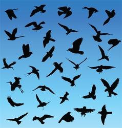 Birds in flight vector