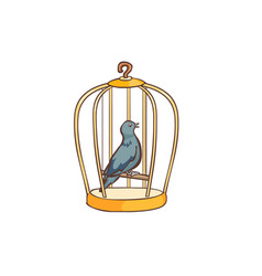 Columbidae bird singing in the cage vector