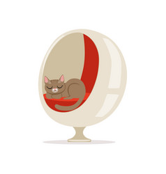 Lovely grey cat sleeping on a modern ball chair vector