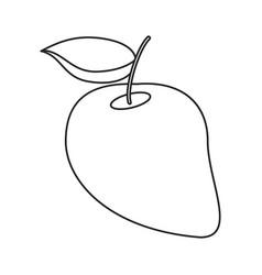Mango juicy fruit thin line vector