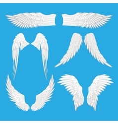 Angel eagle bird wings vector