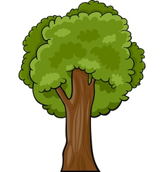 Cartoon of deciduous tree vector