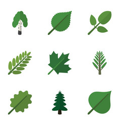 Flat icon ecology set of timber park leaves and vector