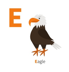 Letter e eagle big beak beautiful exotic bird icon vector