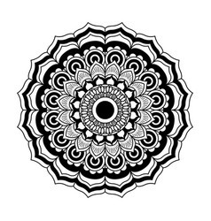 monochrome flower mandala vintage decorative swirl vector image
