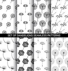 Set of Dandelions seamless patterns vector image vector image