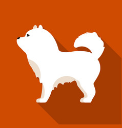 chow-chow icon in flat style for web vector image