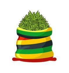 Rasta sack of cannabis large bag of marijuana for vector