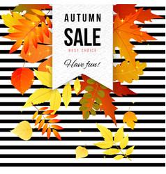 Bright autumn sale striped poster vector
