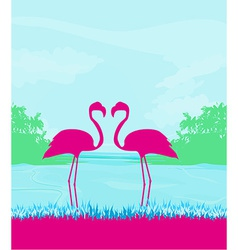 Flamingo couple in wild nature landscape vector