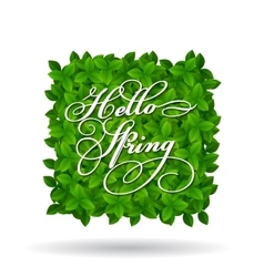 Hello spring greeting in squar shape vector