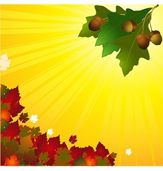 Autumn background with leafs and acorn vector image vector image