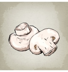 mushrooms champignons vector image