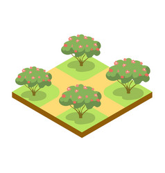 Park alley with apple trees isometric 3d icon vector