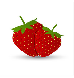 two red strawberries isolated vector image vector image
