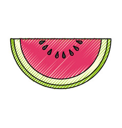 watermelons delicious fruit vector image