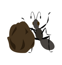 Insect and a pile of manure vector