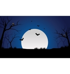 At night bat and full moon scenery silhouette vector