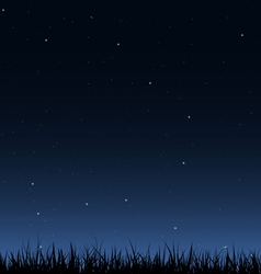 Night sky and grass vector