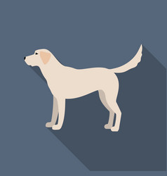 Labrador icon in flat style for web vector