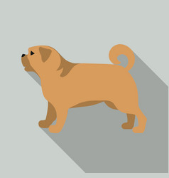 Pug icon in flat style for web vector