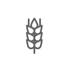 simple wheat ear and grain line icon symbol and vector image