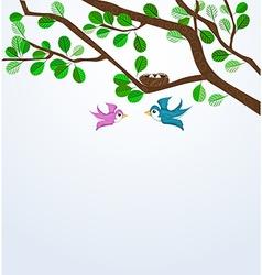 Birds family vector image vector image